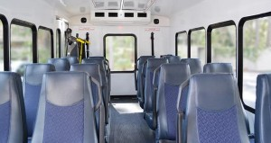 Turtle to bus interior